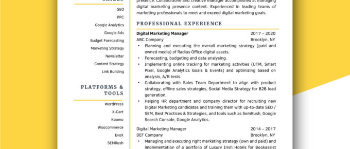 Professional modern resume template